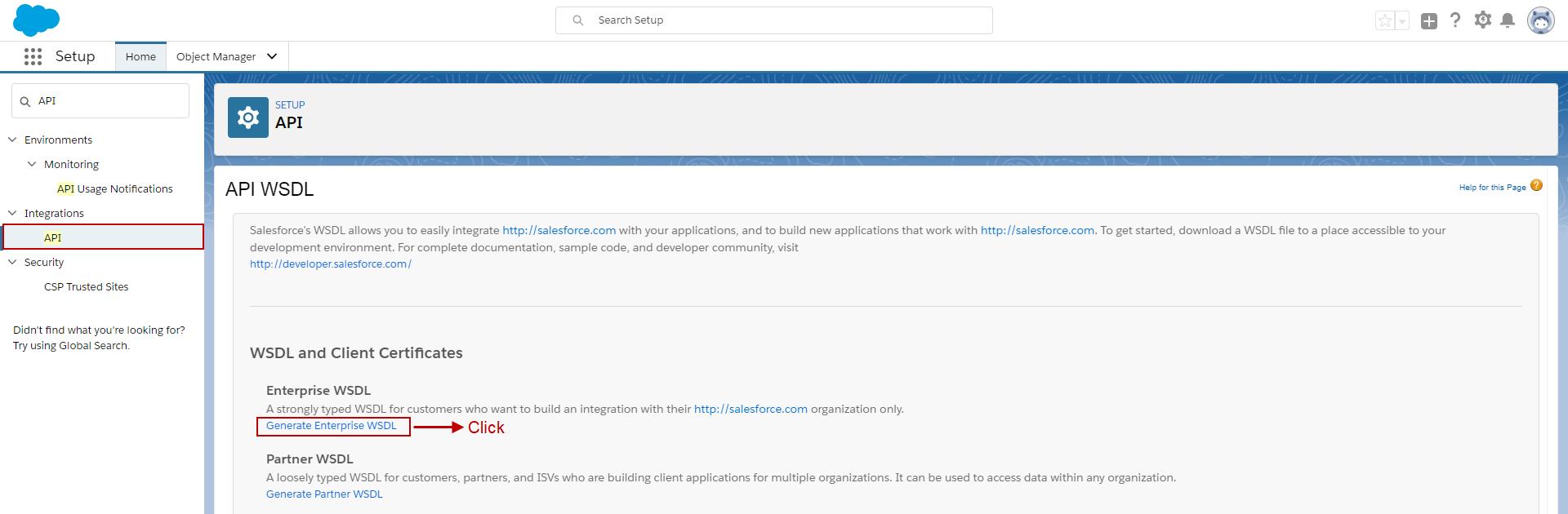 13 1 SOAP API – SKYVVA Integration App
