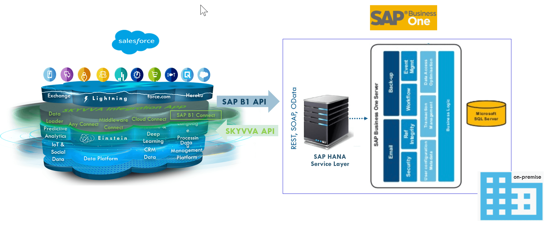 SAP Business One on-premise